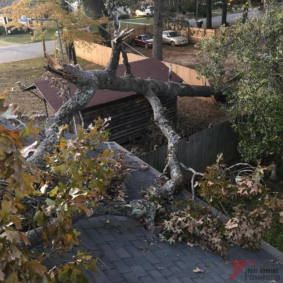 Tree Fallen Over Requiring Roof Storm Damage Repair
